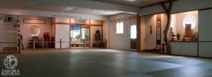Sakura Budokan Dojo Training Area